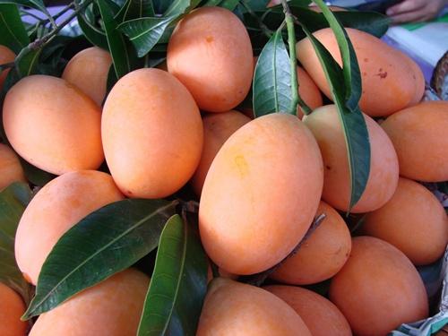 thai fruits, plango