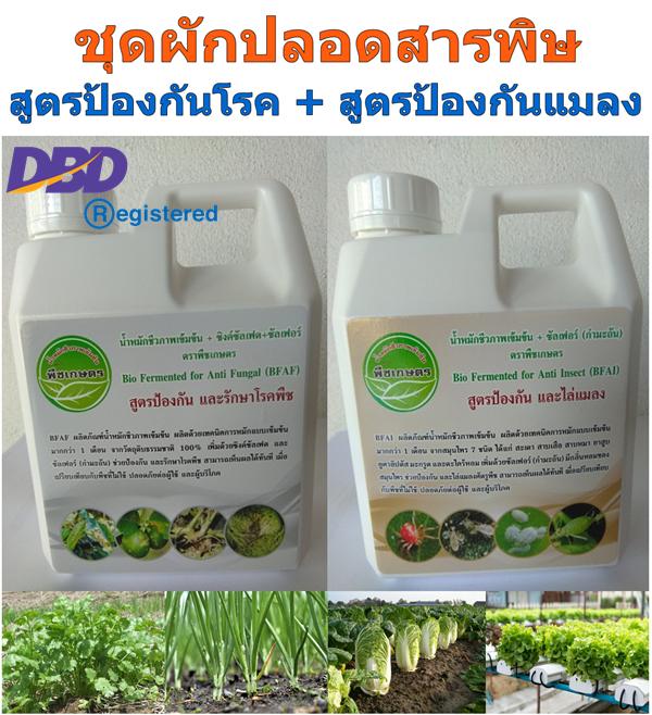 ชุดผักปลอดสารพิษ